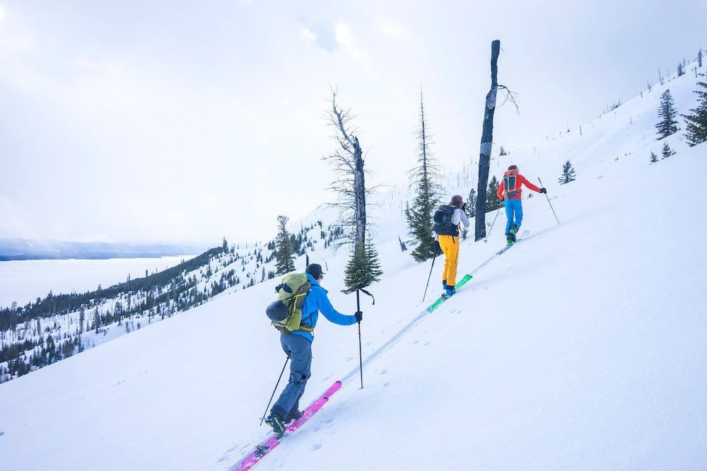 GTNP_ski-guiding2.jpg