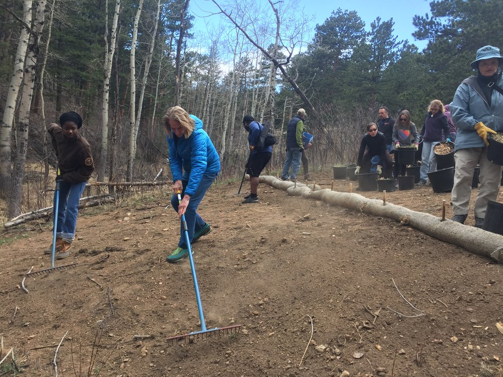 Jamie Logan prepping the soils in RMNP  for seeding and mulching