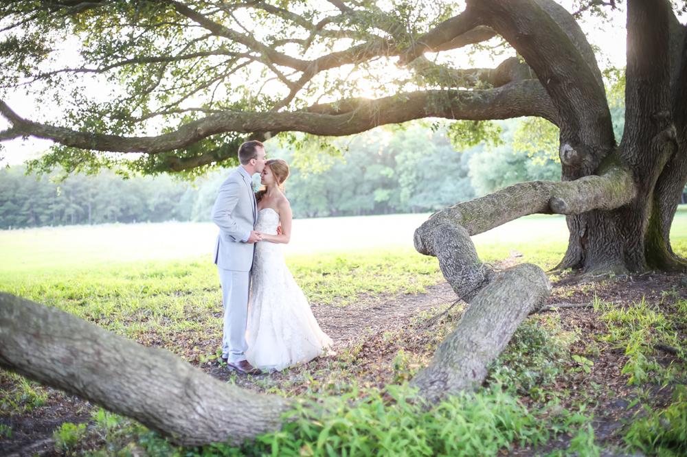 charleston wedding photography bride groom love angel oak tree.jpg