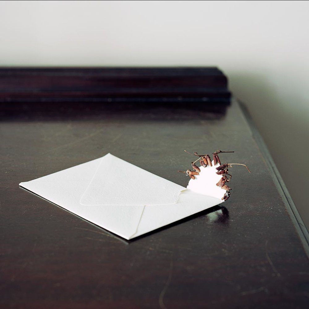 Envelope_Contact.jpg