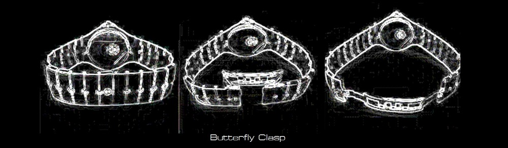 clasp and buckle 2