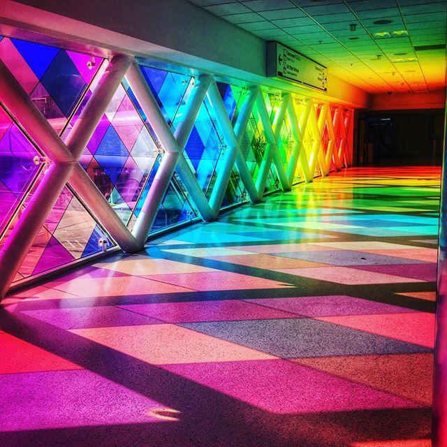 #rainbowfarts & #acidtrips 🌈🌈💨💨#miamibeach #sparklefarts 🌴🌴