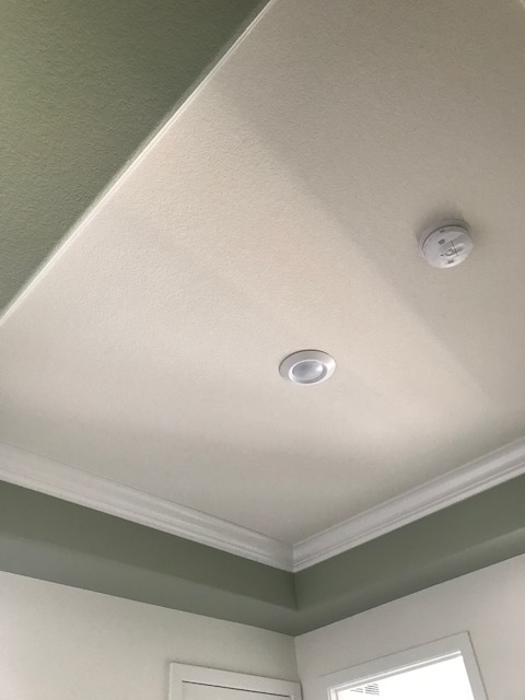 recent custom ceiling.jpg