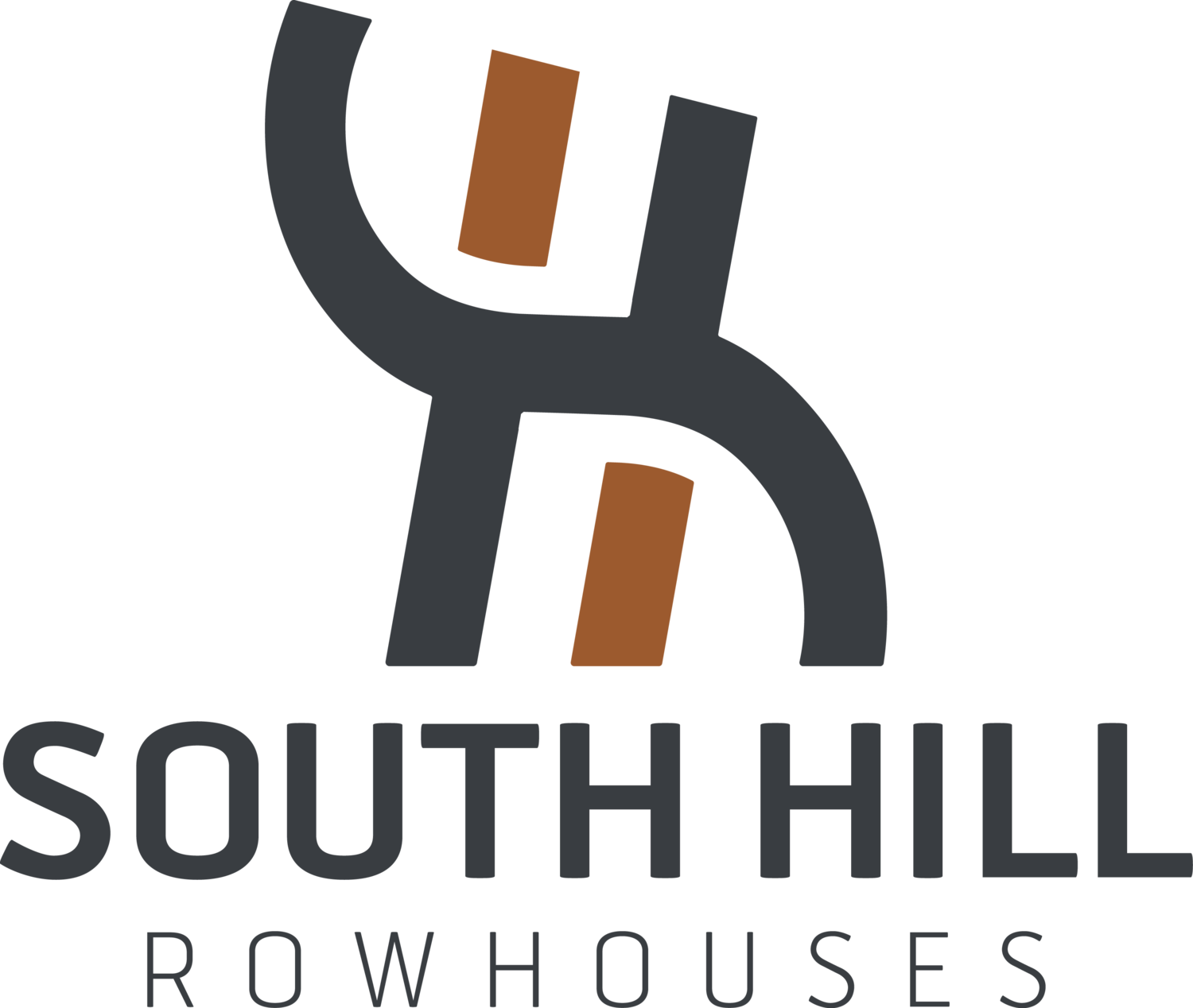 South Hill Rowhouses