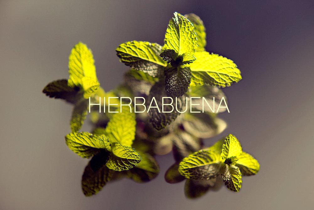 Hierbabuena.jpg