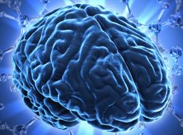 bdnf-brain-mental-health.jpg