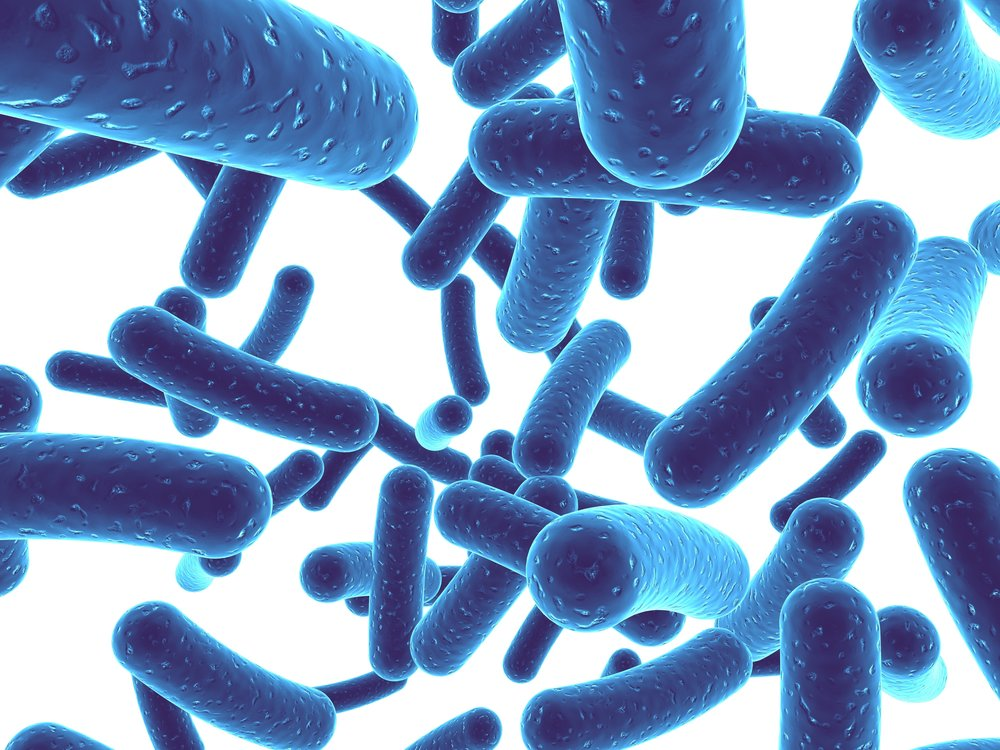 A picture of blue bacteria. Prebiotics feed to the good bacteria in your gut and have been shown to lower cortisol levels.