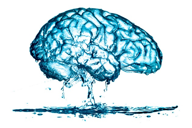 A leaky brain leaking water.