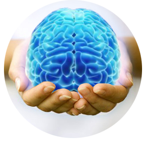 Illustration of person holding a blue brain in their hands.