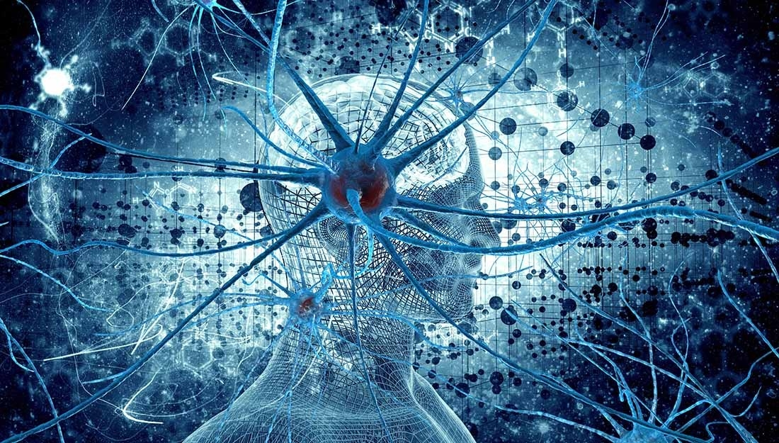 14 Powerful Ways to Form New Synapses in the Brain — Optimal ...