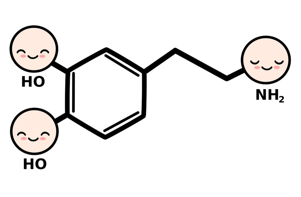The chemical symbol for dopamine with three smiley faces at the ends. DL-Phenylalanine is one of the precursors to dopamine and can help reduce depression.
