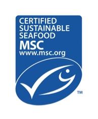 MSC_new_logo_vertical2-223x300-@2x.jpg
