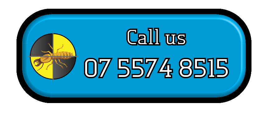 Gold Coast Pest Services Call us