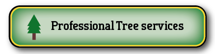 Gold Coast Pest Services Tree Services