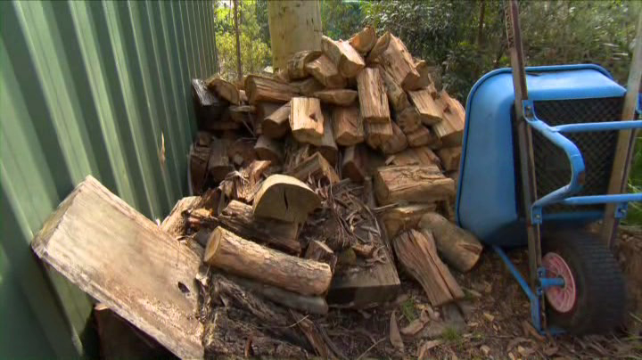 Firewood should be stored off the ground away from the house