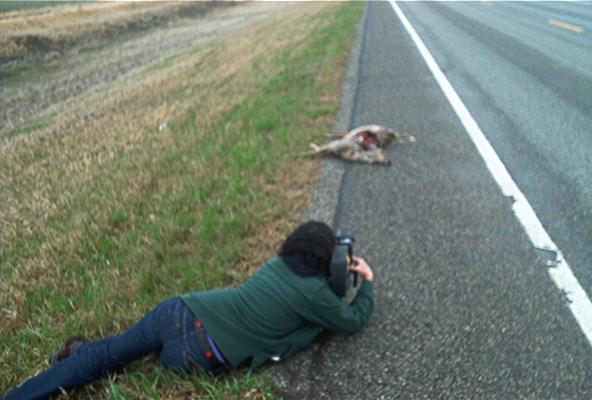 roadkill_shot_lg.jpg