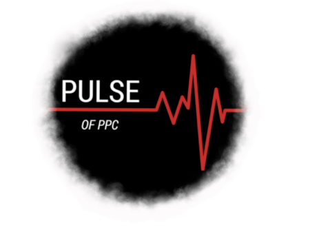 Pulse_test_#3.png