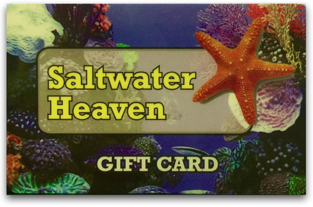 For FAMILY, FRIEND or BOSS Give a Gift of ANY amount so they can get there fish on!