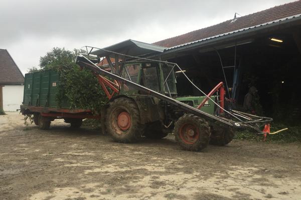 Diminutive high-horsepower tractor and wagon