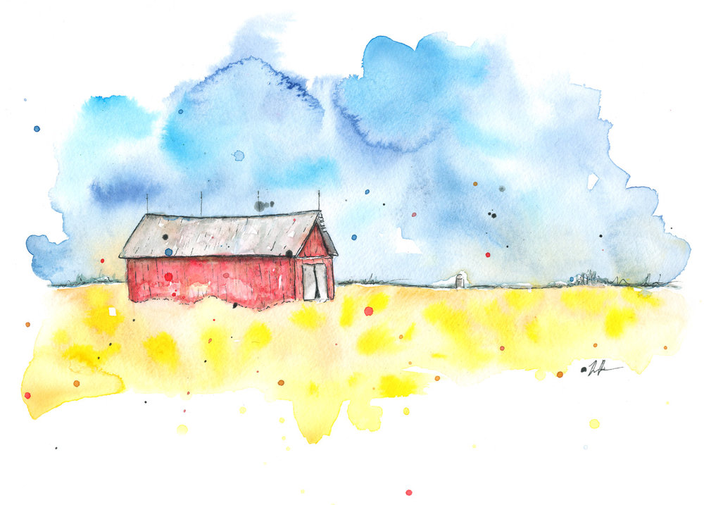 Benjamin-Edward-Red-Barn-Blue-Sky-Yellow-Canola-FIeld-Watercolour-Illustration.jpg
