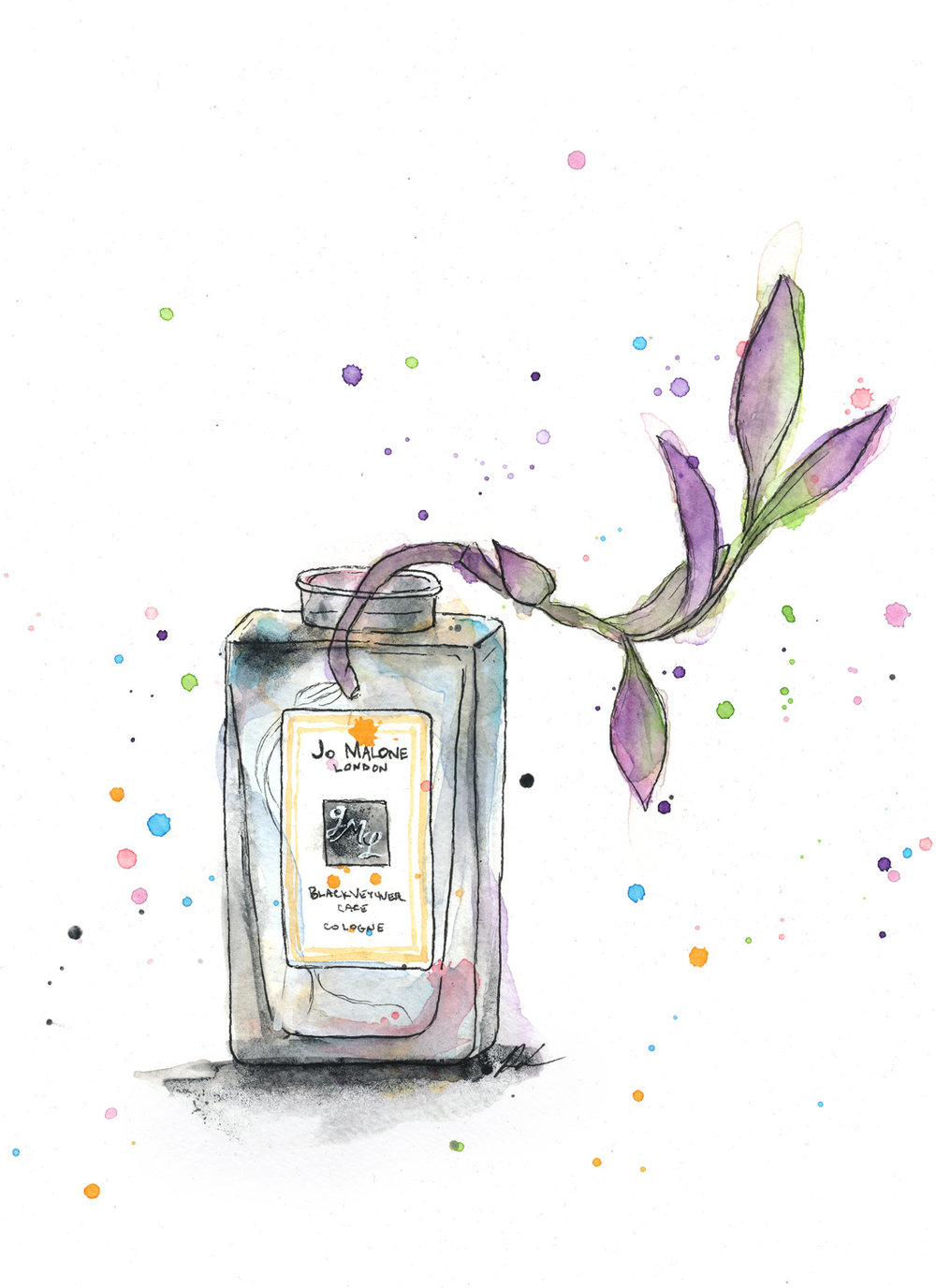 Benjamin-Edward-Jo-Malone-London-Black-Vetiver-Cafe-Cologne-Wandering-Jew-watercolour-illustration.jpg