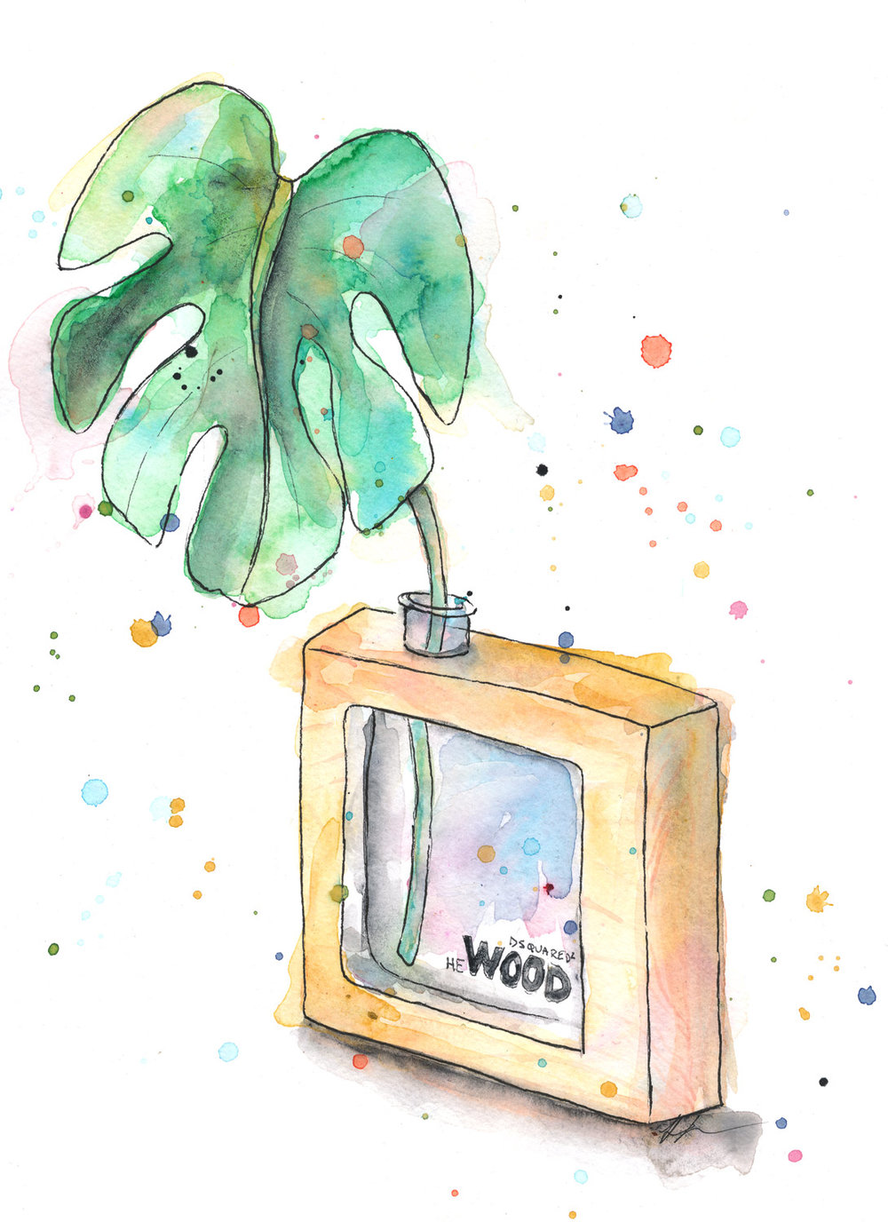 Benjamin-Edward-Dsquared-Dsquared2-Wood-Hewood-Cologne-Mostera-Deliciosa-watercolour-illustration.jpg