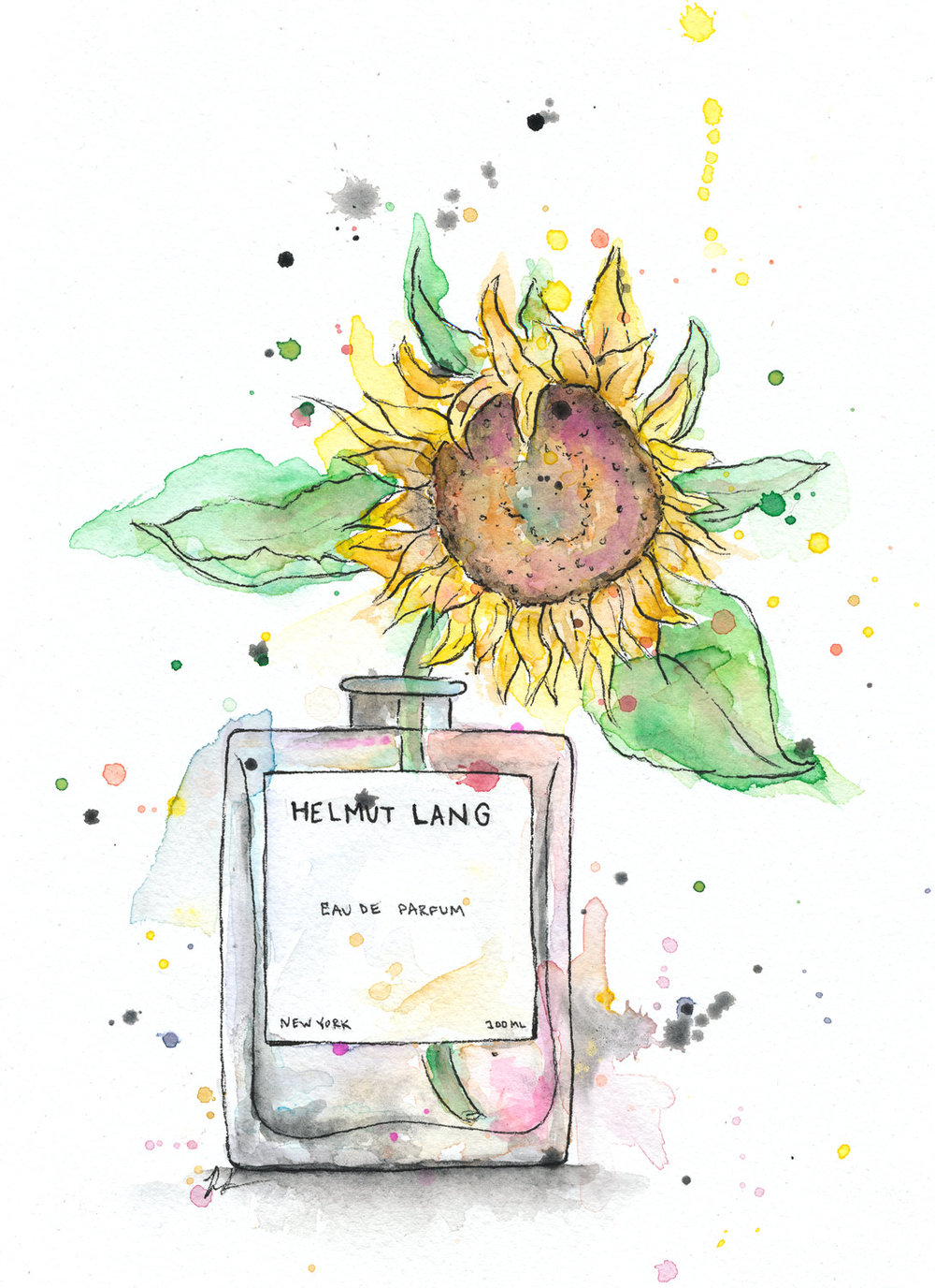 Benjamin-Edward-Helmut-Lange-Eau-De-Parfum-Sunflower-Perfume-watercolour-illustration.jpg