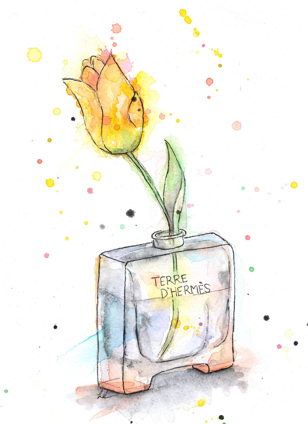 Benjamin-Edward-Terre-Hermes-Yellow-Tulip-Perfume-watercolour-illustration.jpg