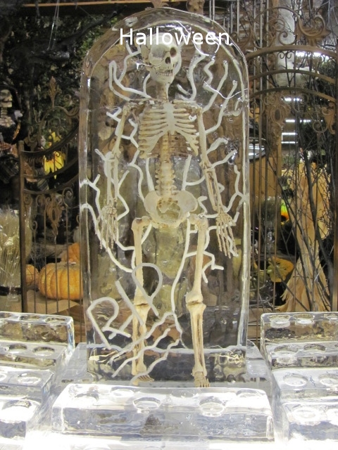 Skeleton in Ice.jpg