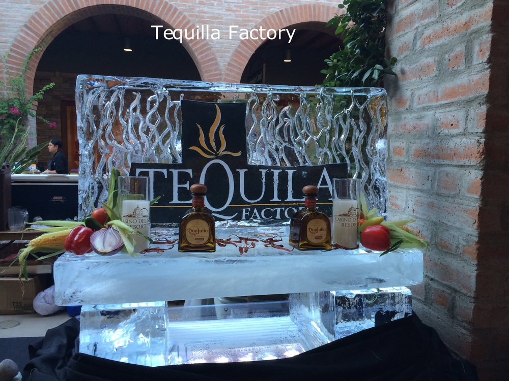Tequilla Factory.jpg