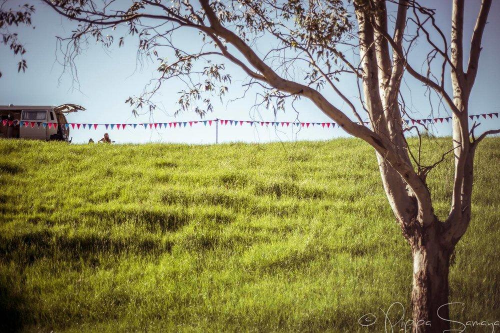 Credit Pippa Samaya_Happy Wanderer Festival 4_Bunting.jpg