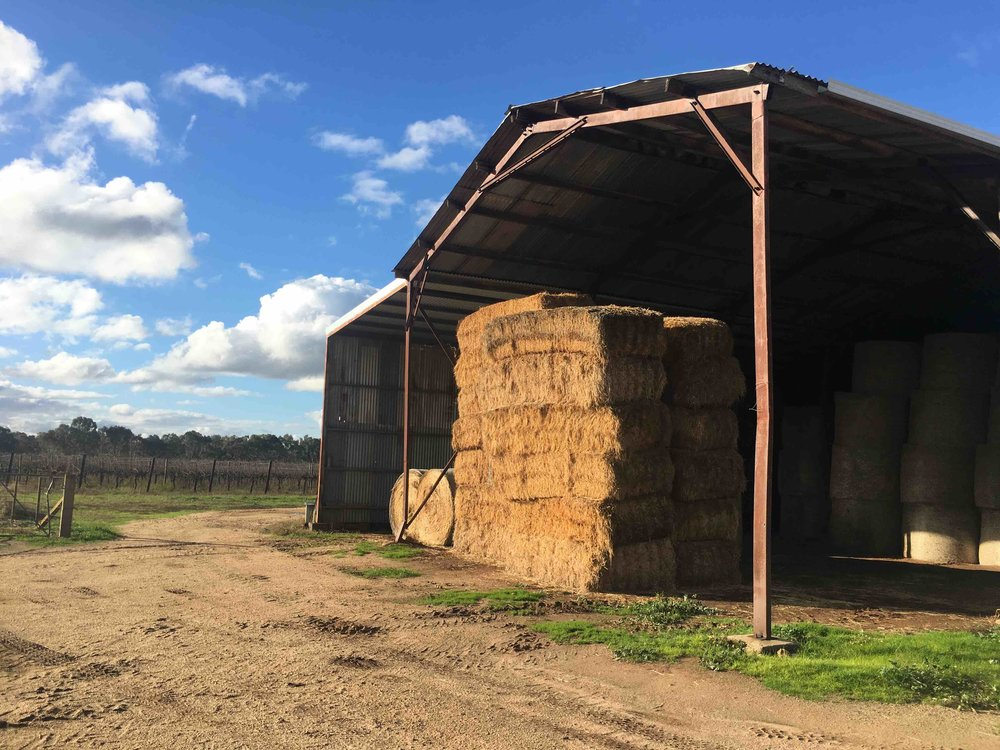 Farm hay.jpeg