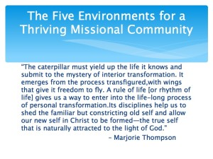 2 The Five Environments of a Thriving Missional Community.016-001