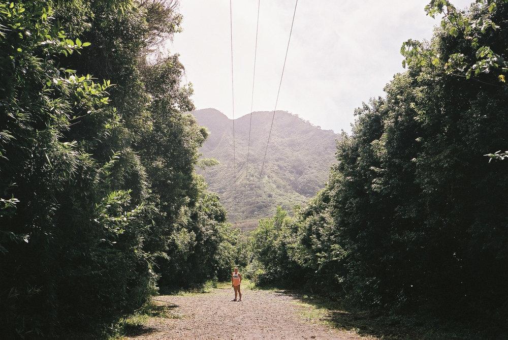 hawaii_f1000016.jpg