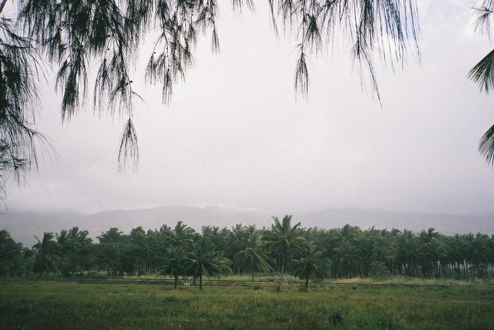 hawaii_f1000029 2.jpg