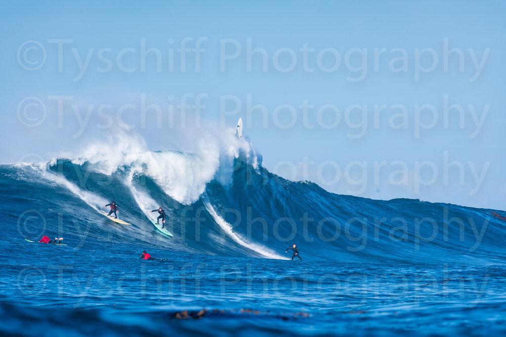 For Surfmag-20183183.jpg