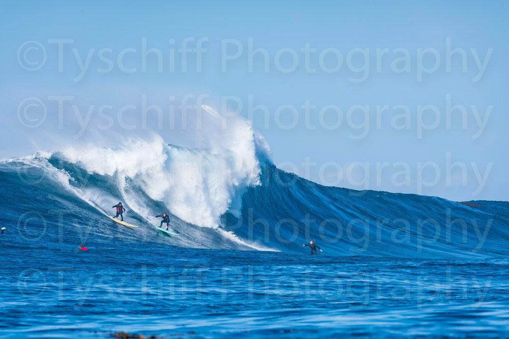 For Surfmag-20183185.jpg