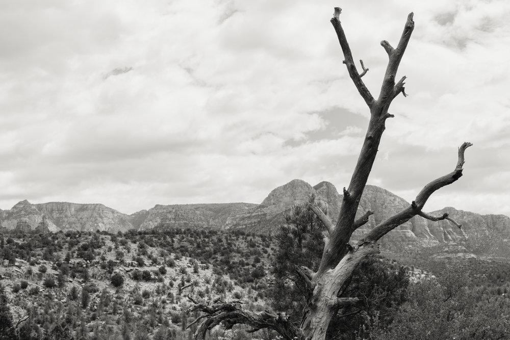 Sedona, Arizona - Memphis Photographer - Arizona Photographer - Landscape Photographer - Fine Art Photographer - K. Stoddard Photography & Fine Art 02.jpg