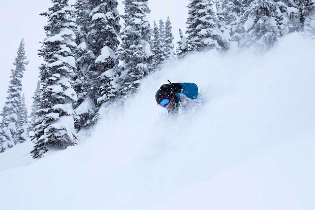 happened upon a Revelstoke cat day - @scottdlewis1 swallowed up by blower pow, a solid intro to the area, looking forward to many returns  #skigreatnorthern #Revelstoke #skiporn #blower #pow  @uncleoswald