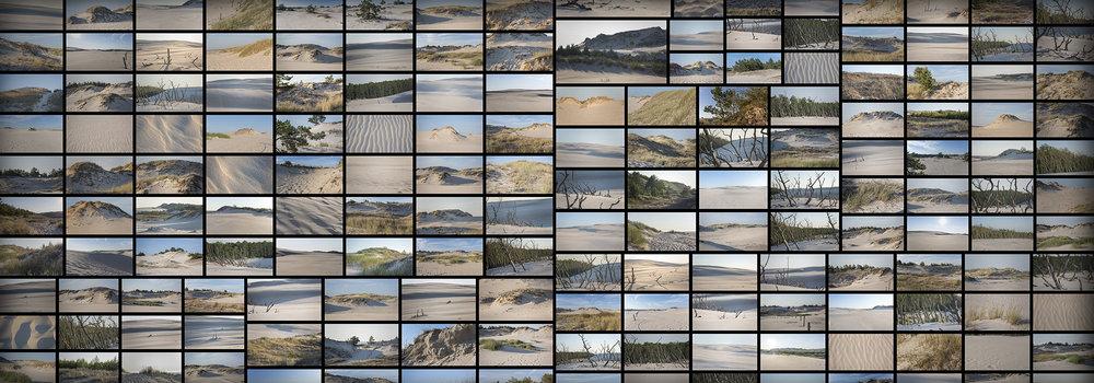 CoastalDunesSandLandscapes