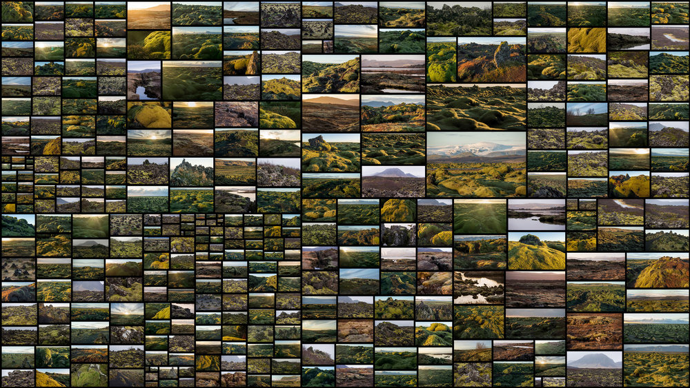 Mossy-Flatlands.jpg