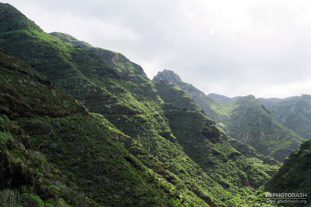 Anaga-Mountains-Coastal-Green-Canyon.jpg