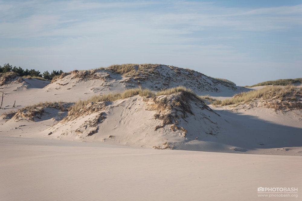 Coastal-Dunes-Beach-Shoreline.jpg