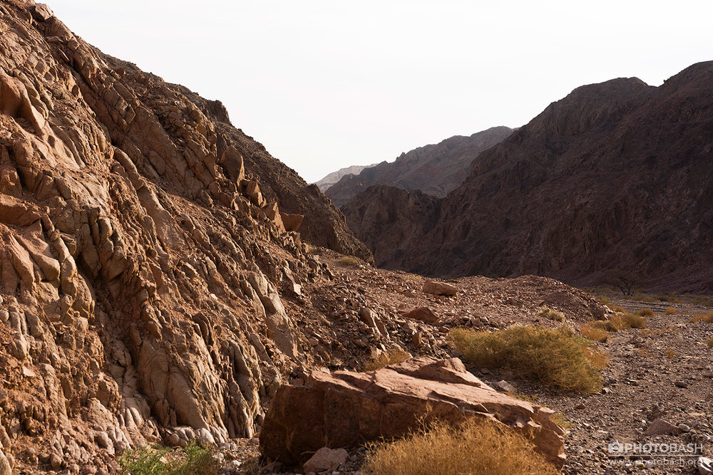 Eilat-Desert-Arid-Canyon-Landscape.jpg