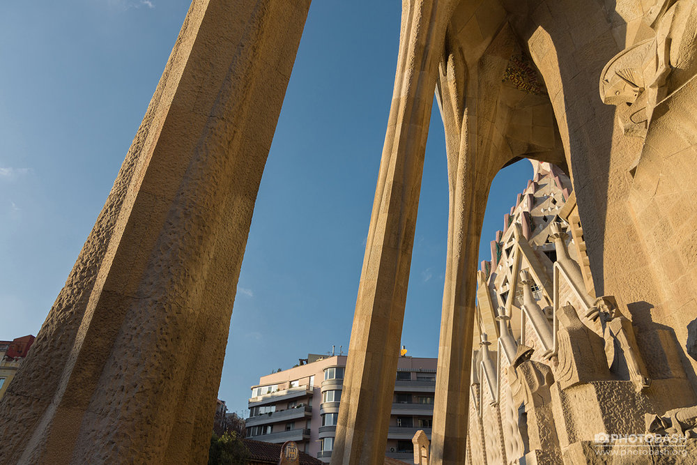 Gaudi-Architecture-Sagrada-Familia-Pillars.jpg