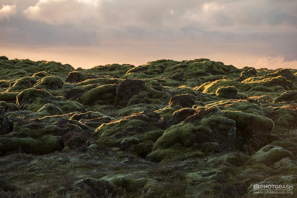 Mossy-Flatlands-Lava-Fields-Iceland.jpg