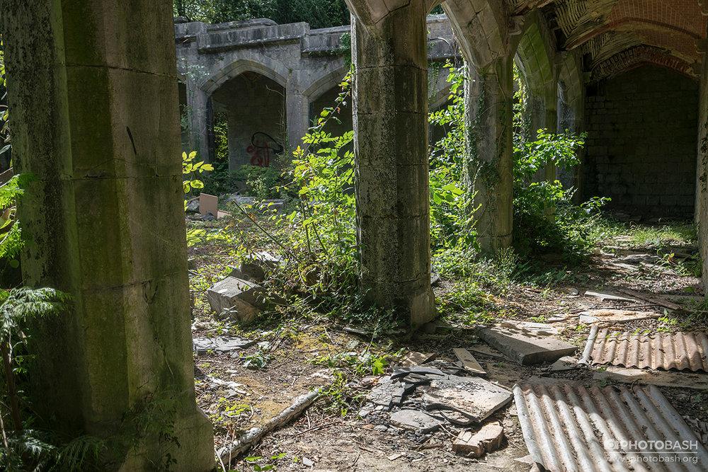 Overgrown-Castle-Corridor-Pillars.jpg