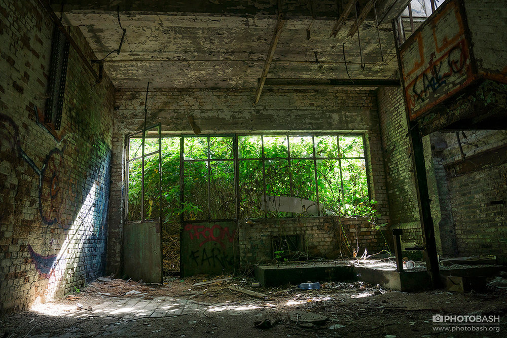 Overgrown-Factory-Derelict-Room.jpg