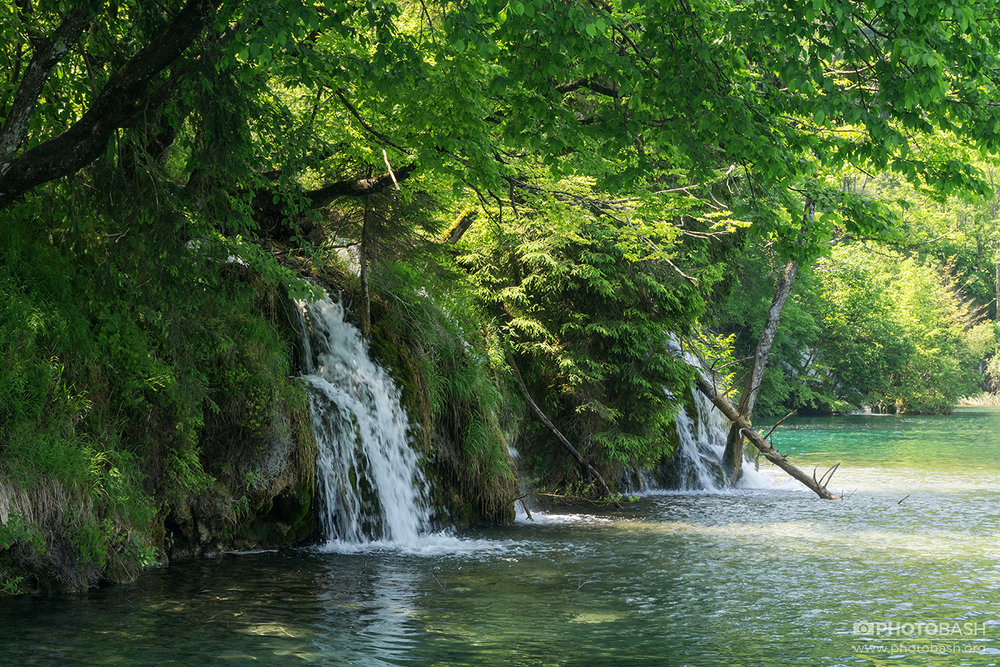 Plitvice-Waterfalls-Lush-Lake-Plants.jpg
