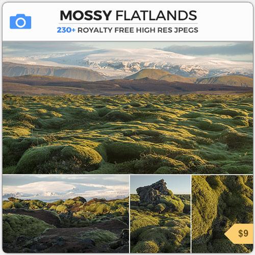 Mossy Flatlands Lava Fields Iceland